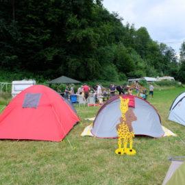 Vater Kind-Zelten mit viel Sonnenschein